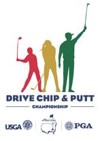 DriveChipPutt2015