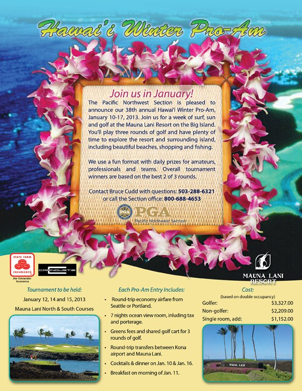 2013 Hawaii flyer